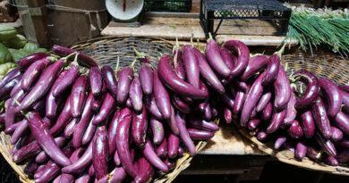 7 ผักผลไม้สีม่วง ช่วยชะลอวัยได้ดีที่สุด